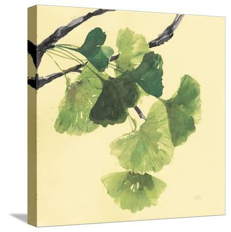 Gingko Leaves I Dark-Chris Paschke-Stretched Canvas Print