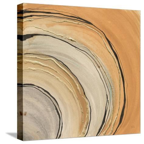 Gilded Rings-Chris Paschke-Stretched Canvas Print