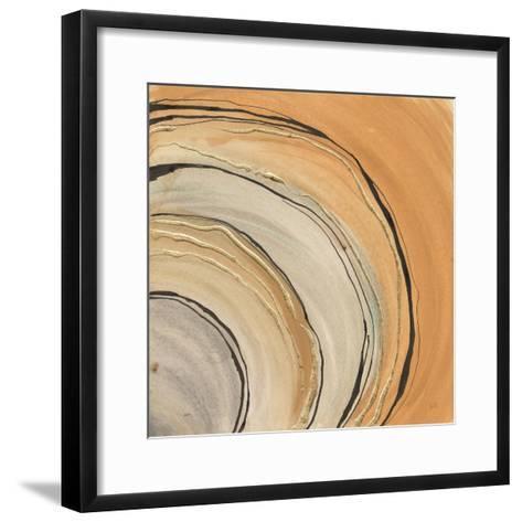 Gilded Rings-Chris Paschke-Framed Art Print