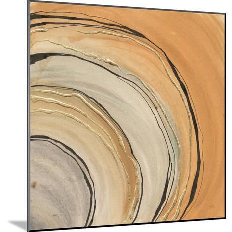 Gilded Rings-Chris Paschke-Mounted Art Print