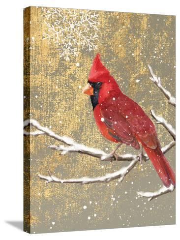 Winter Birds Cardinal Color-Beth Grove-Stretched Canvas Print