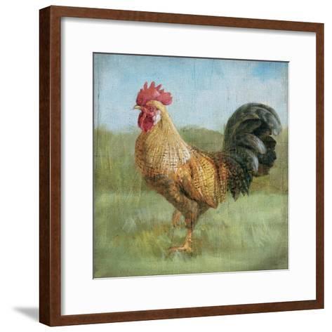 Noble Rooster II Vintage No Border-Danhui Nai-Framed Art Print