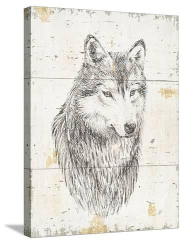 Wild and Beautiful III-Daphne Brissonnet-Stretched Canvas Print