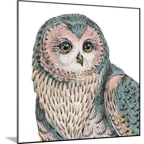 Beautiful Owls IV Pastel Crop-Daphne Brissonnet-Mounted Art Print