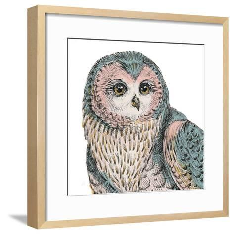 Beautiful Owls IV Pastel Crop-Daphne Brissonnet-Framed Art Print