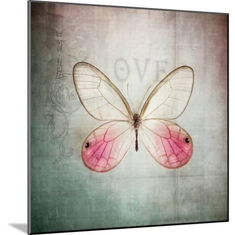 French Butterfly I-Debra Van Swearingen-Mounted Art Print
