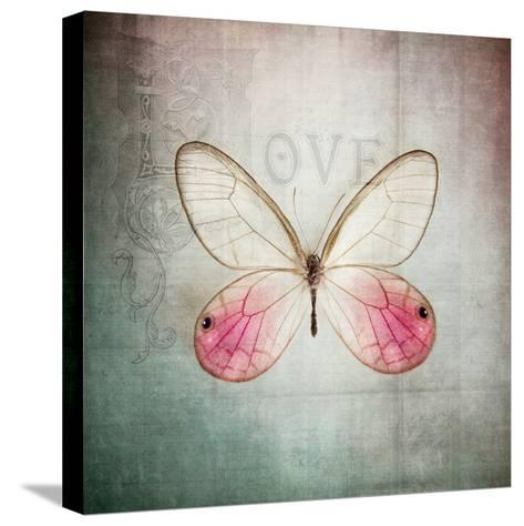 French Butterfly I-Debra Van Swearingen-Stretched Canvas Print