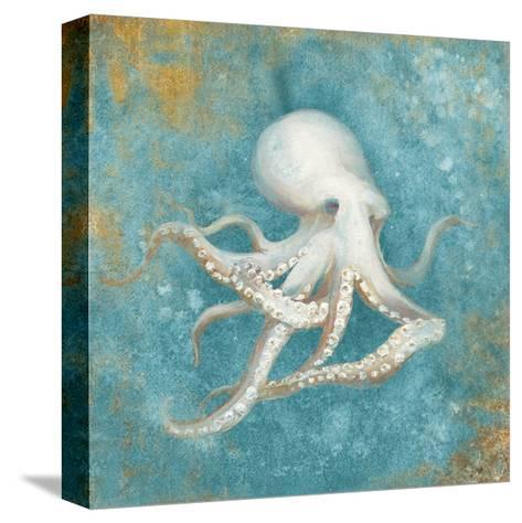 Treaures from the Sea V Aqua-Danhui Nai-Stretched Canvas Print