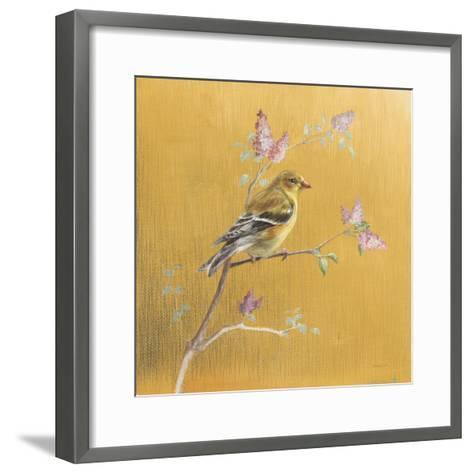 Female Goldfinch on Gold-Danhui Nai-Framed Art Print