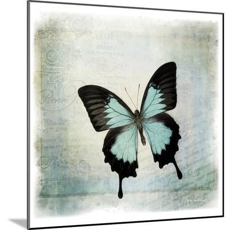 Floating Butterfly III-Debra Van Swearingen-Mounted Art Print