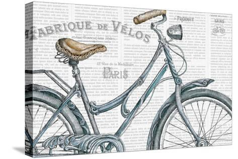 Bicycles III-Daphne Brissonnet-Stretched Canvas Print
