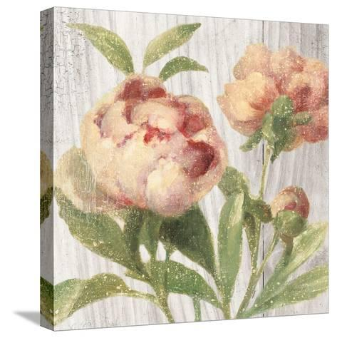 Scented Cottage Florals I Crop-Danhui Nai-Stretched Canvas Print