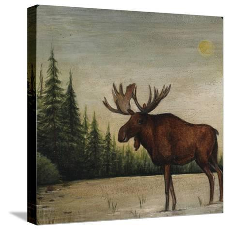 North Woods Moose II-David Cater Brown-Stretched Canvas Print