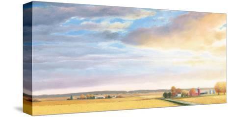 Heartland Landscape Sky-James Wiens-Stretched Canvas Print