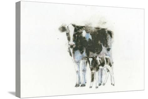 Cow and Calf Light-Emily Adams-Stretched Canvas Print