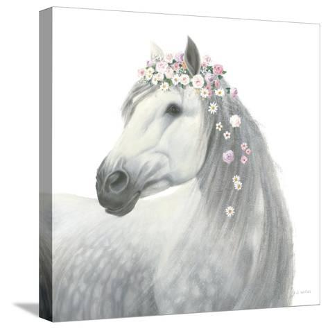 Spirit Stallion II Square-James Wiens-Stretched Canvas Print