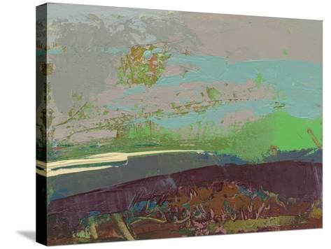 Ceide Study XVI-Grainne Dowling-Stretched Canvas Print
