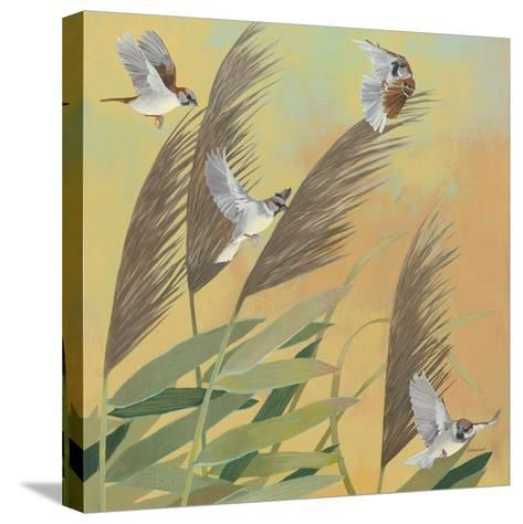 Sparrows and Phragmates Sq-Kathrine Lovell-Stretched Canvas Print