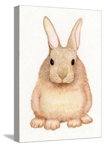 Spring Bunny I White-Kathleen Parr McKenna-Stretched Canvas Print