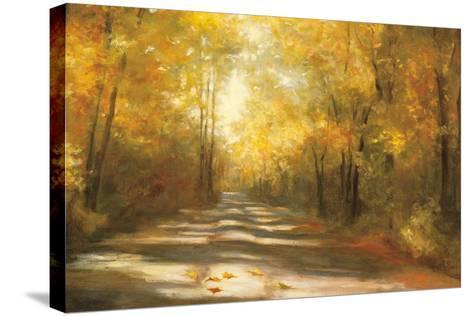 Gap Road Crop-Julia Purinton-Stretched Canvas Print