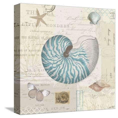 Beach Wonders IV-Katie Pertiet-Stretched Canvas Print