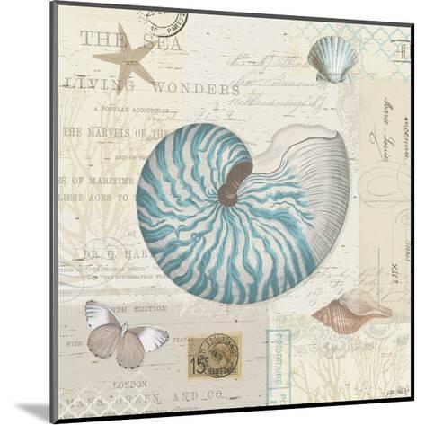 Beach Wonders IV-Katie Pertiet-Mounted Art Print