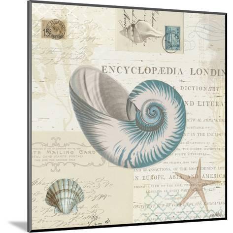 Beach Wonders III No Butterflies-Katie Pertiet-Mounted Art Print
