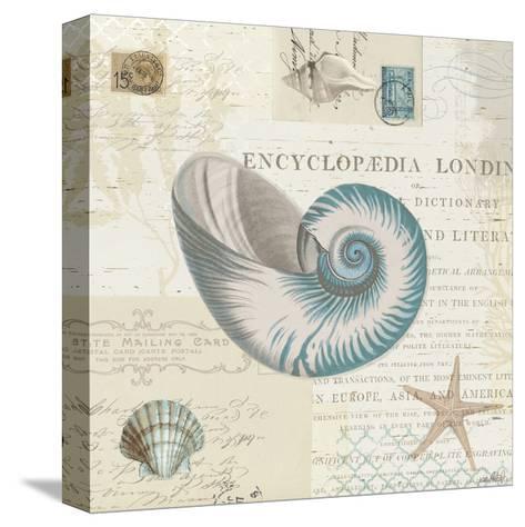 Beach Wonders III No Butterflies-Katie Pertiet-Stretched Canvas Print