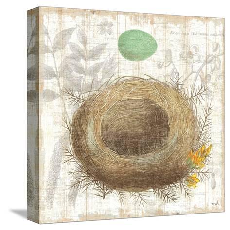 Botanical Nest II-Moira Hershey-Stretched Canvas Print