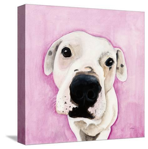 Pink-Patsy Ducklow-Stretched Canvas Print