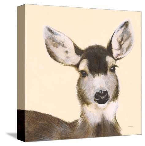 Whitetailed Deer I-Patsy Ducklow-Stretched Canvas Print