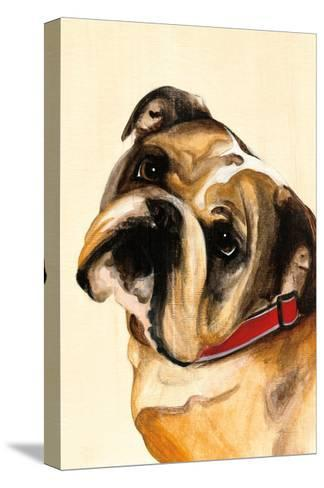 Winston-Patsy Ducklow-Stretched Canvas Print