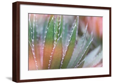 Dream Desert III-Sue Schlabach-Framed Art Print