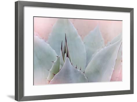 Dream Desert V-Sue Schlabach-Framed Art Print