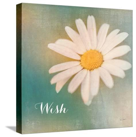 Daisy Wishes-Sue Schlabach-Stretched Canvas Print