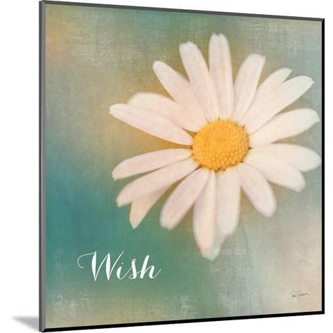 Daisy Wishes-Sue Schlabach-Mounted Art Print