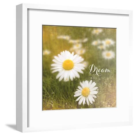 Daisy Dreams-Sue Schlabach-Framed Art Print