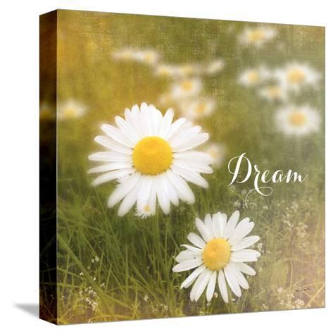 Daisy Dreams-Sue Schlabach-Stretched Canvas Print