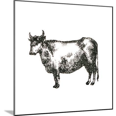 Farm Animal Icons IV-Sue Schlabach-Mounted Art Print