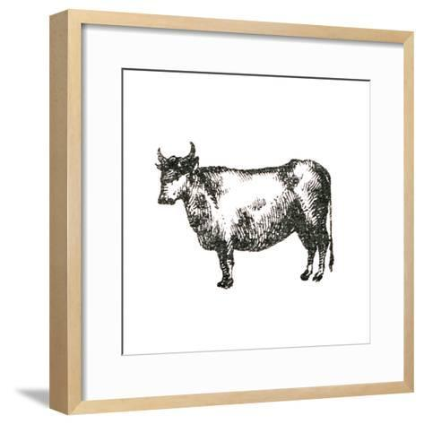 Farm Animal Icons IV-Sue Schlabach-Framed Art Print