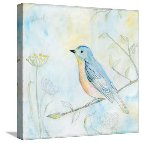Sketched Songbird II-Sue Schlabach-Stretched Canvas Print