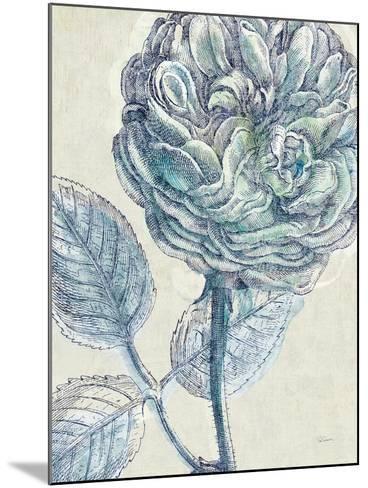 Belle Fleur III Crop-Sue Schlabach-Mounted Art Print