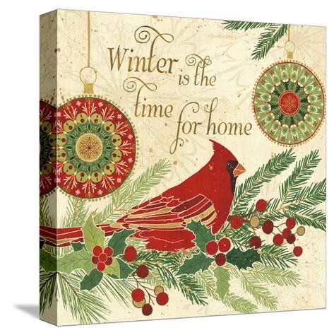 Winter Feathers V-Veronique Charron-Stretched Canvas Print