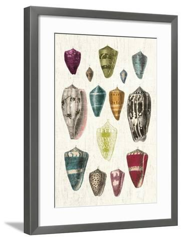 Colorful Shell Assortment I v2-Wild Apple Portfolio-Framed Art Print