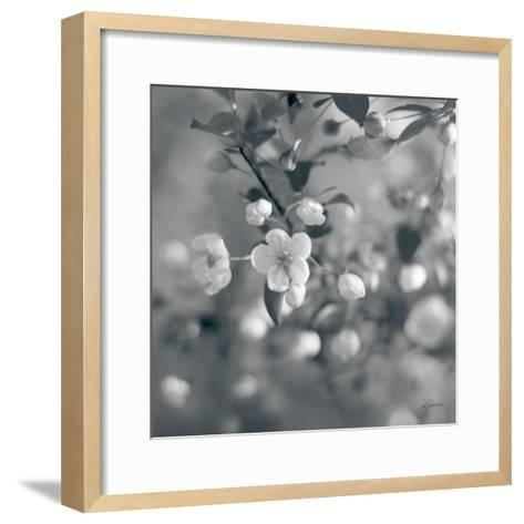 Blush Blossoms I Square BW-Sue Schlabach-Framed Art Print