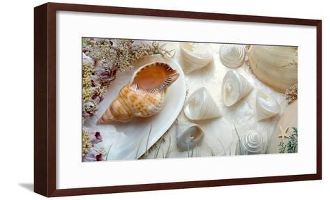 Island Tide Pool No. 6-Alan Blaustein-Framed Art Print