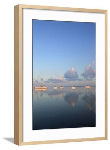 Sunrise Sails-Brent Anderson-Framed Art Print