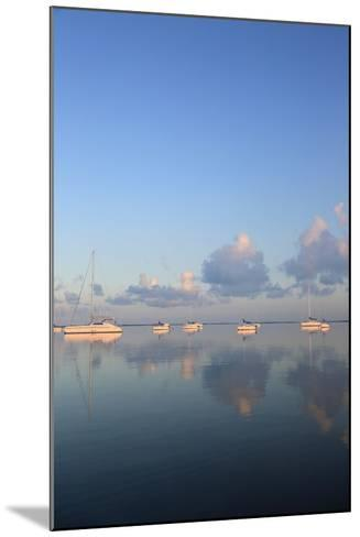 Sunrise Sails-Brent Anderson-Mounted Photographic Print