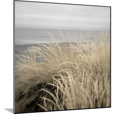 Tuscan Dunes #2A-Alan Blaustein-Mounted Photographic Print