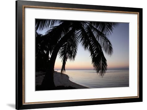 Palm Tree Sunset-Brent Anderson-Framed Art Print